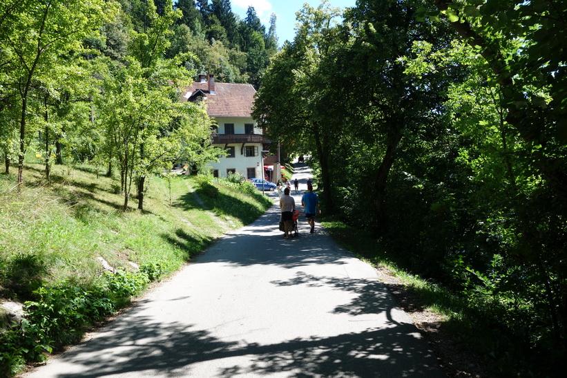 Cykel- och gångvägen runt Lake Bled.
