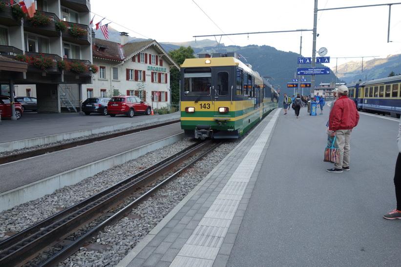 Tåget till Kleine Scheidegg rullar in på Grindelwald-stationen. Här är jag väldigt förväntansfull.