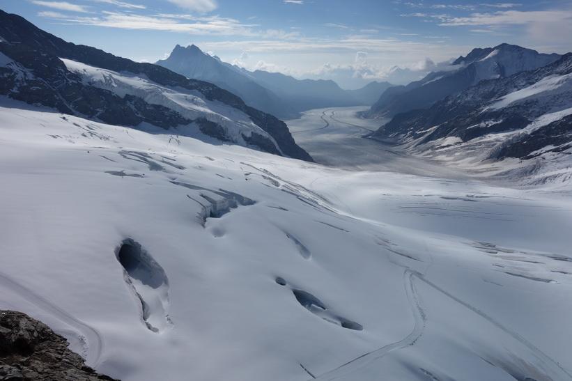 Mäktiga Grosser Aletschgletscher, alpernas längsta glaciär sedd från Sphinx-terrassen, Jungfraujoch.