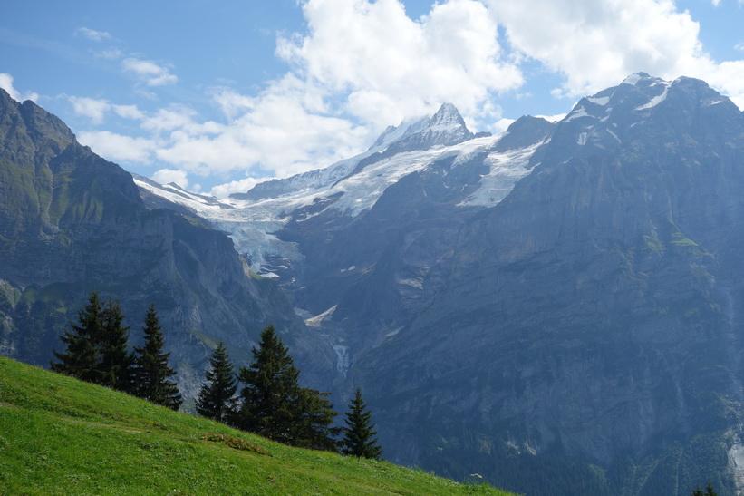 Utsikten från liftkorgen på väg upp mot First från Grindelwald.