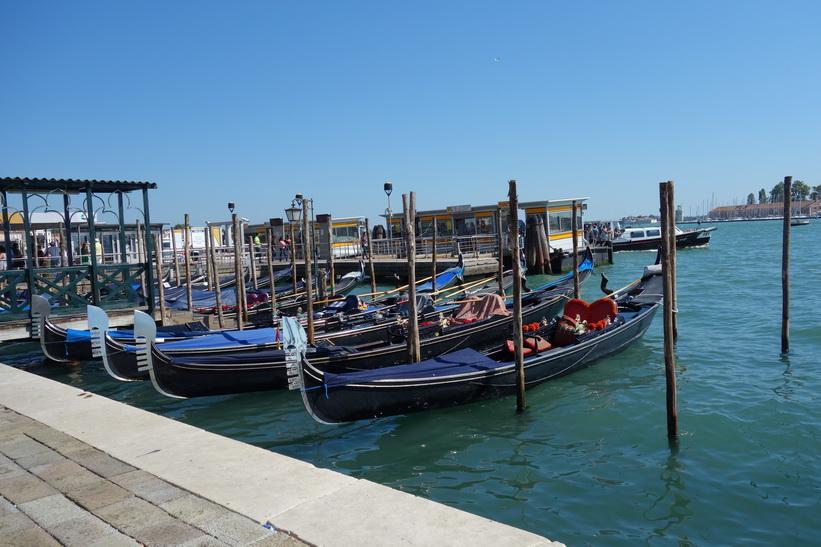 Gondoler längs gatan Riva degli Schiavoni, Venedig.
