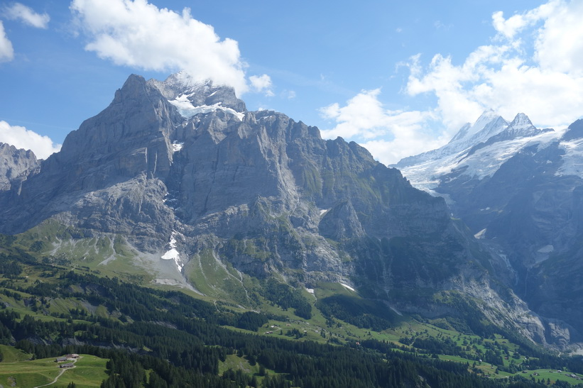 Grindelwald_D1.jpg