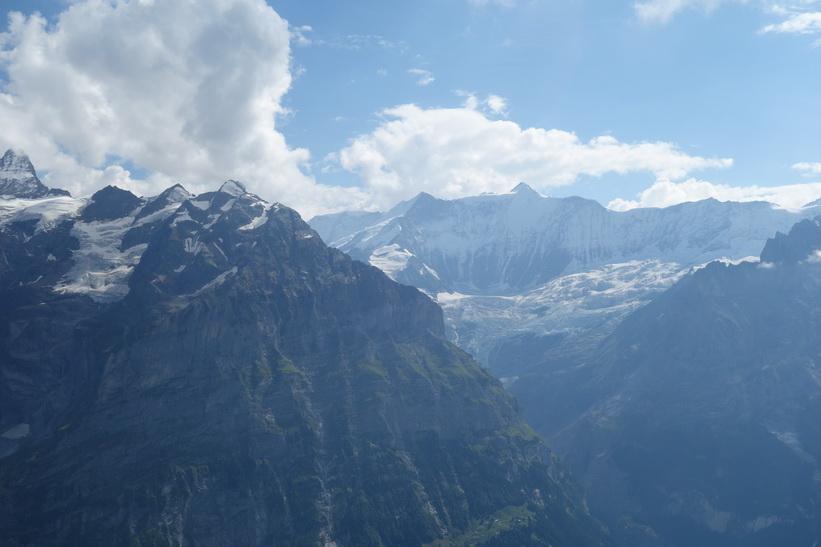 Utsikten mot Wetterhorn till vänster i bild från First.