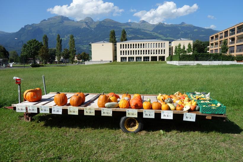 Pumpor till salu i Vaduz ytterområden.