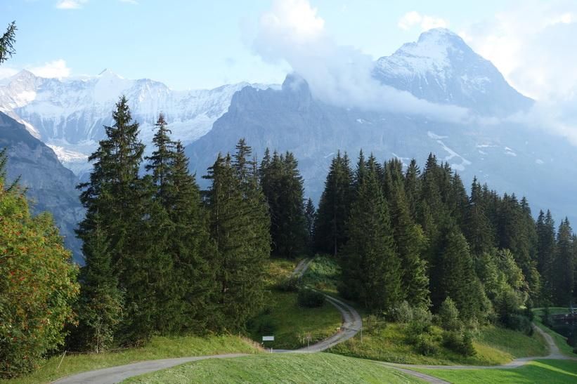 Mäktiga Eiger dominerar landskapet. Den långa vandringen från Bachsee (2265 m.ö.h.) hela vägen ner till Grindelwald (1034 m.ö.h.).