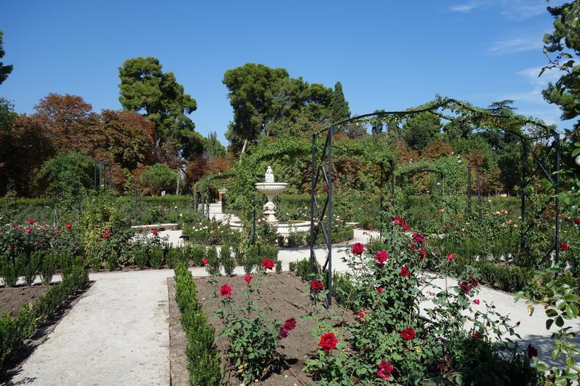 La Rosaleda, Parque de El Retiro, Madrid.