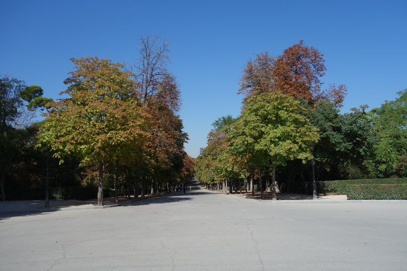 Parque de El Retiro, Madrid.