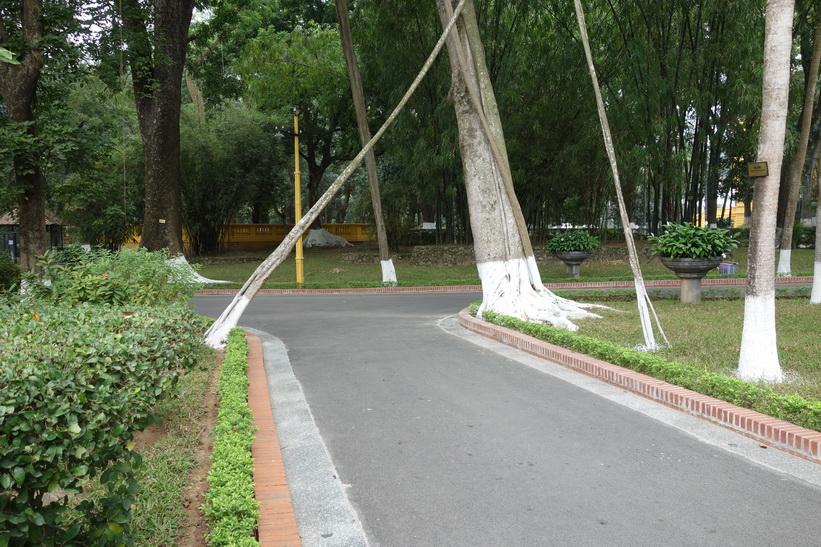 Vietnamesisk hjärtemark, Ho Chi Minh complex, Hanoi.