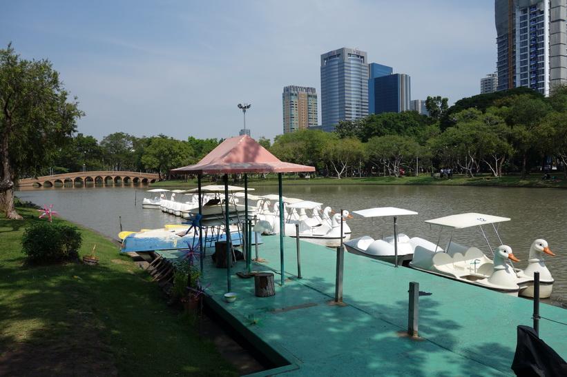 Chatuchak Park, Bangkok.