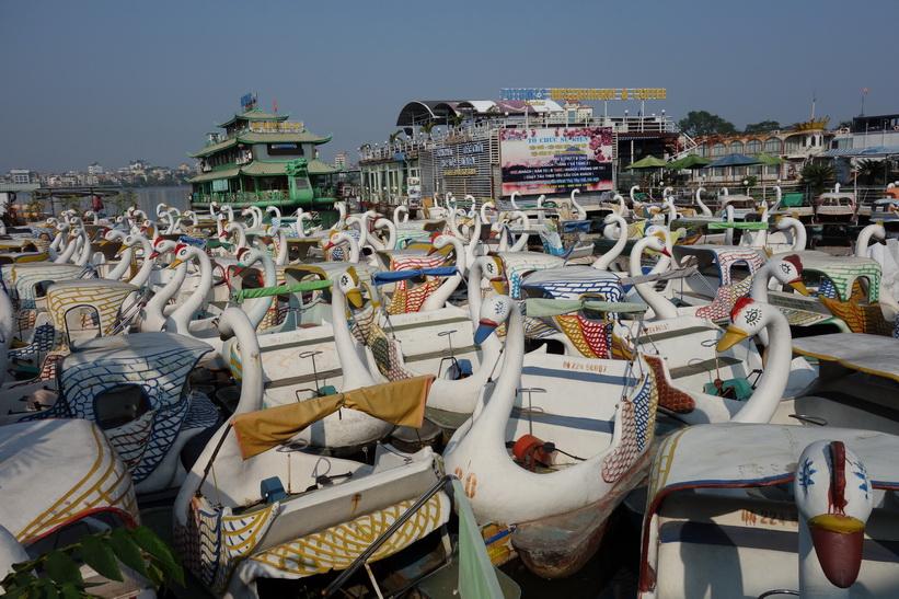 Trampbåtar i Hồ Tây-sjön, Hanoi.