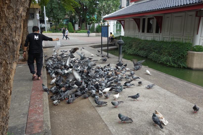 Benjasiri-parken, Bangkok.