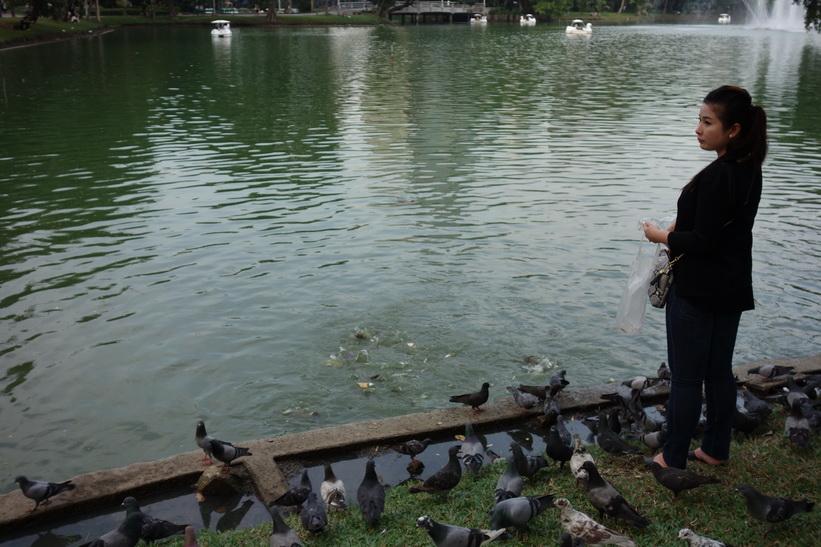 Hon slår två flugor i en smäll och matar både fiskar och fåglar, Lumpini-parken, Bangkok.
